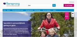Nieuwe website de Viersprong_home