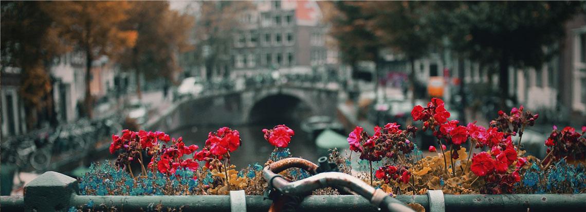 Jeugd GGZ Viersprong Amsterdam geen wachttijd